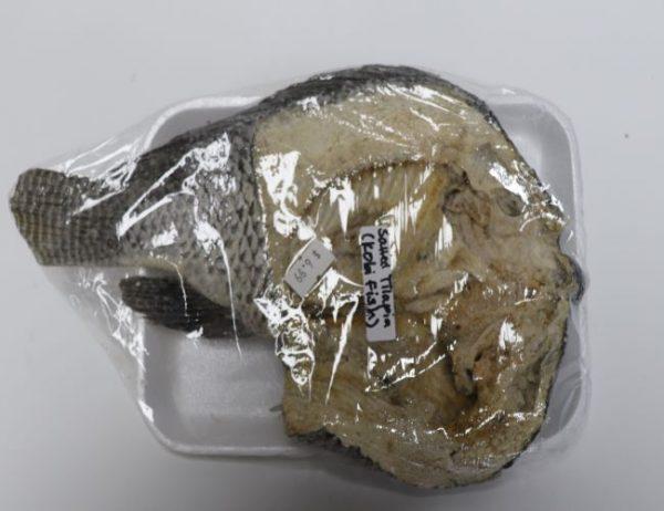 Salted Tilapia (Kobi fish)